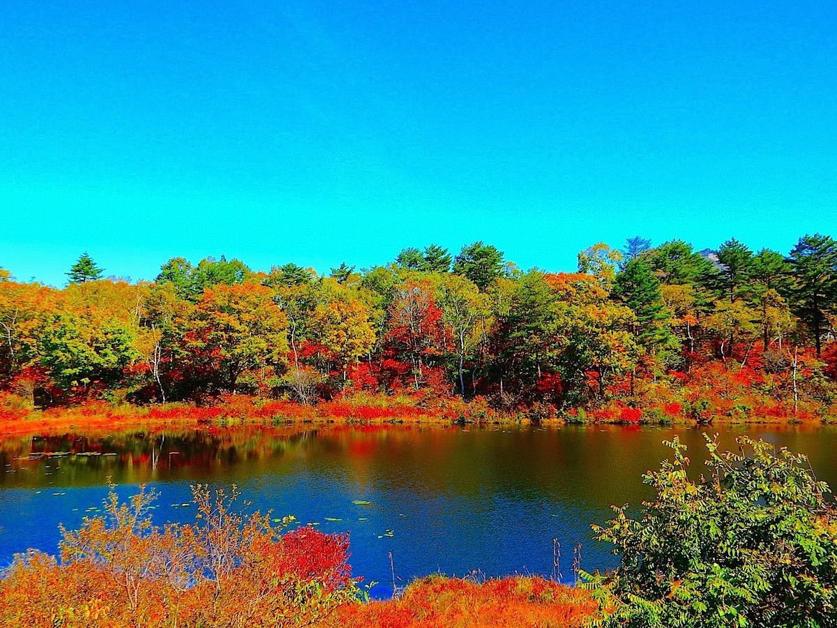 【信州の池】志賀高原の入口に位置する最初の池 一沼(山ノ内 ...