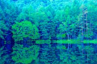 【信州の池】ブーム寸前! 東山魁夷の愛した御射鹿池(茅野市)